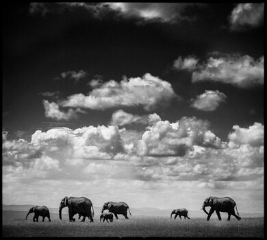 Photo Under the Clouds I - Laurent Baheux