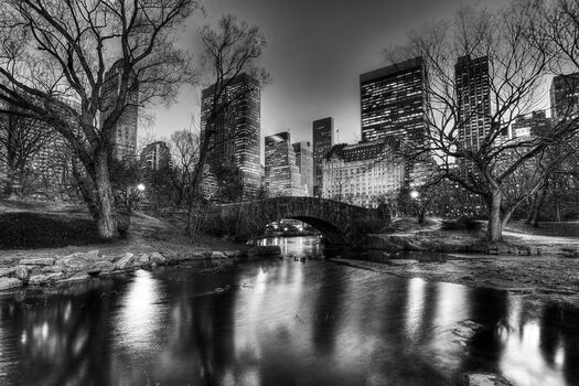 Photo Central Park Evening - Christopher Bliss