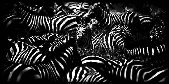 Photo Alone - Laurent Baheux