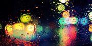 Rainy Bokeh