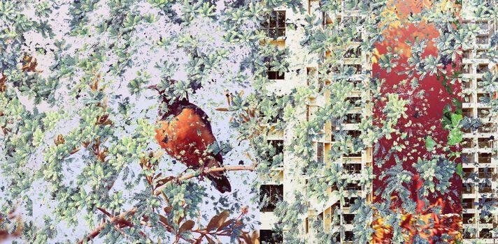 Photo Night with Bird - Shan Kun Wu