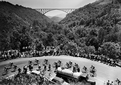 Photo Tour de France 1959 - SPORTS PRESSE