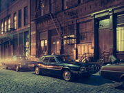THE QUEEN OF NEW YORK