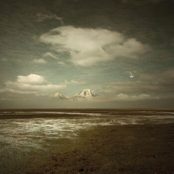 Photo Movement of Grace - Michal Karcz