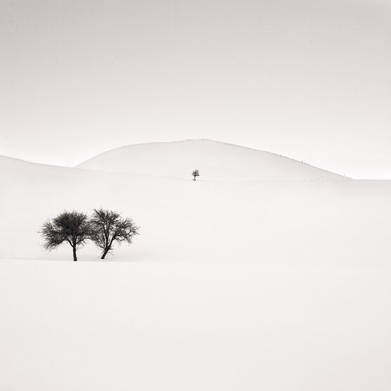 Photo Don't Forget Us - Ebru Sidar