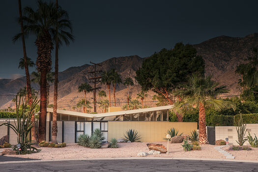Photo ICONIC PALM-SPRINGS - Ludwig Favre