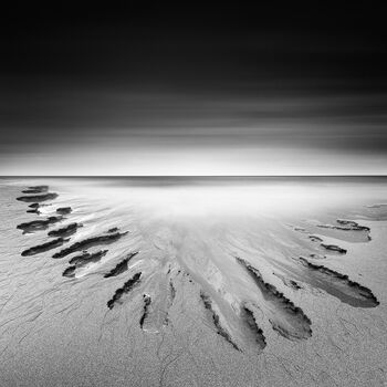 Photo Artist Called Nature - Zoltan Bekefy