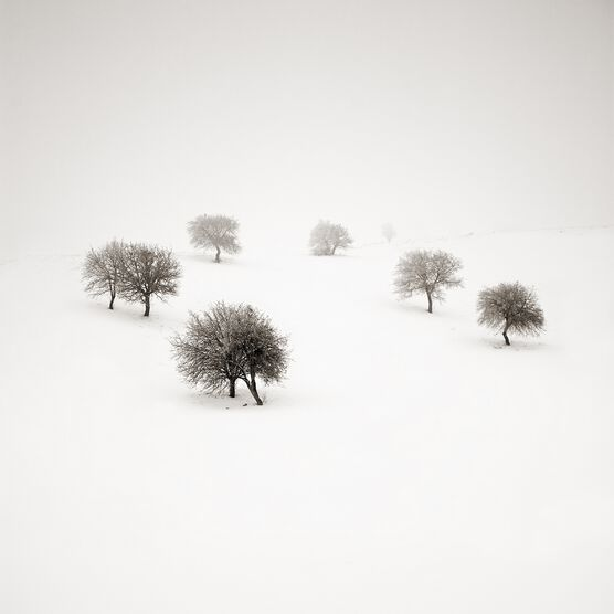 Photo Dancefloor - Ebru Sidar