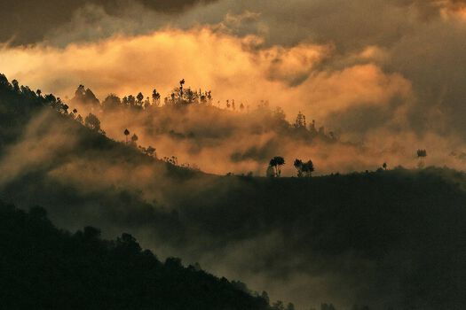 Photo Les contreforts himalayens - Matthieu Ricard