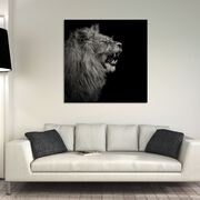 YOUNG LION I