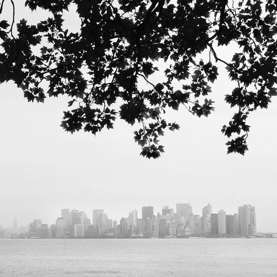 Photo Manhattan View - Nina Papiorek