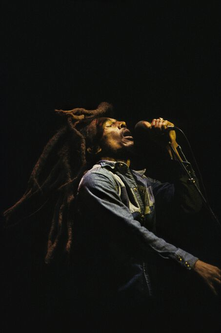 Photo Marley - Peter Hankfield